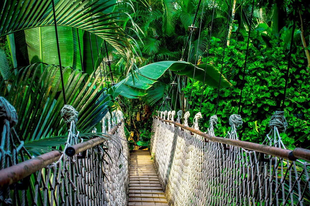 【元の心理学研究を見てみよう】吊り橋効果で好きな人を落とせるは嘘なのか?本当なのか?