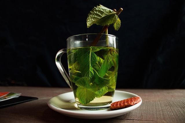 緑茶 マウスウォッシュ効果 殺菌 カテキン