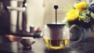 緑茶 green tea ダイエット 脂肪燃焼効果