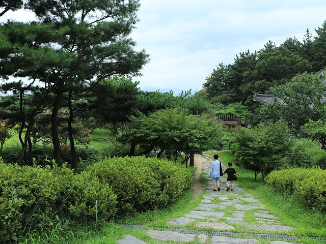 自然 散歩 リラックス効果