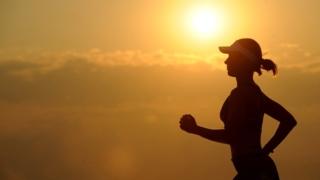 運動 脳 BDNF タイミング 健康