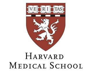 ハーバード大学メディカルスクールが勧める『炎症と闘う健康的な食事』がマクドを遠回しにディスってる件。