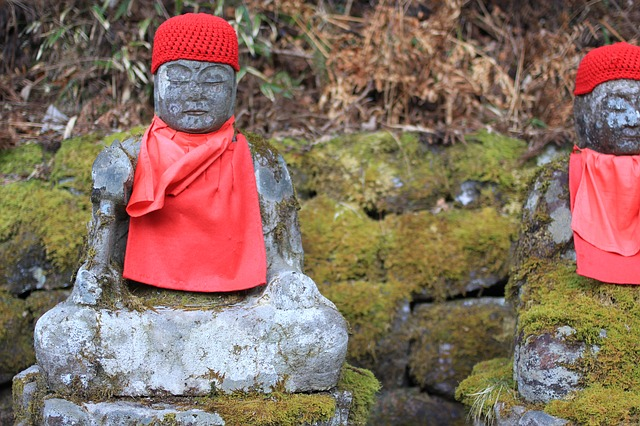 セルフコンパッション 仏教 科学