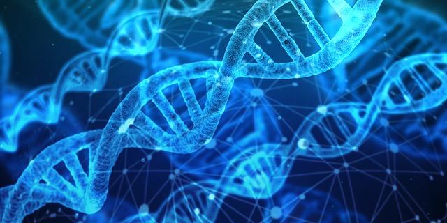 分岐鎖アミノ酸 BCAA 効果