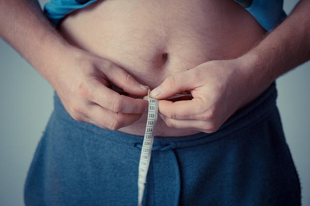 肥満 セットポイント理論