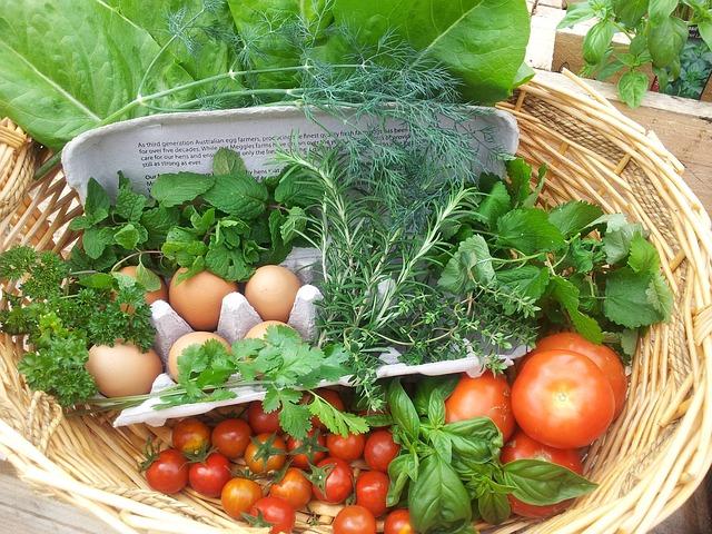 食糧持続性 サステナビリティ 健康