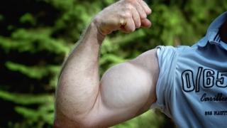 筋トレ 筋肥大 頻度