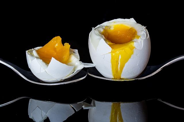 卵 一日何個 糖尿病