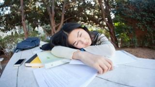 睡眠 学習 徐波 脳波