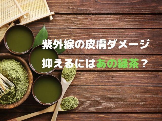 緑茶 紫外線 皮膚 抗酸化 EGCG