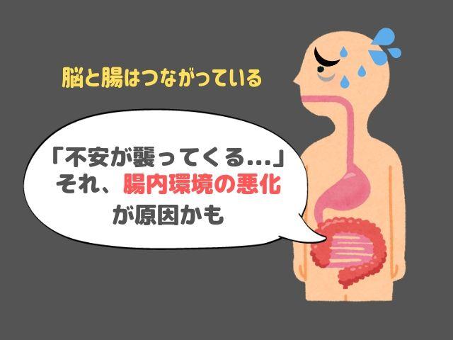 腸内環境 メンタル 不安