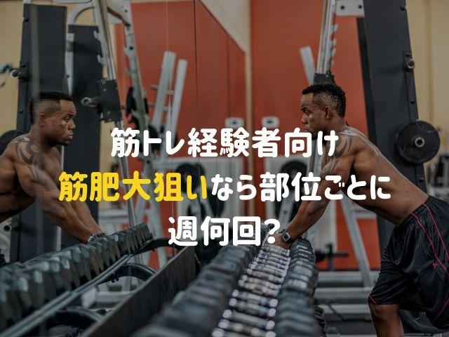 【筋トレ経験者向け】筋肥大を狙うなら部位ごとに週何回ジムへ行けばいいのか?