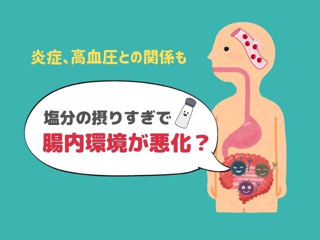 【意外な関係】塩分を取りすぎると腸内環境が悪化するかもしれない