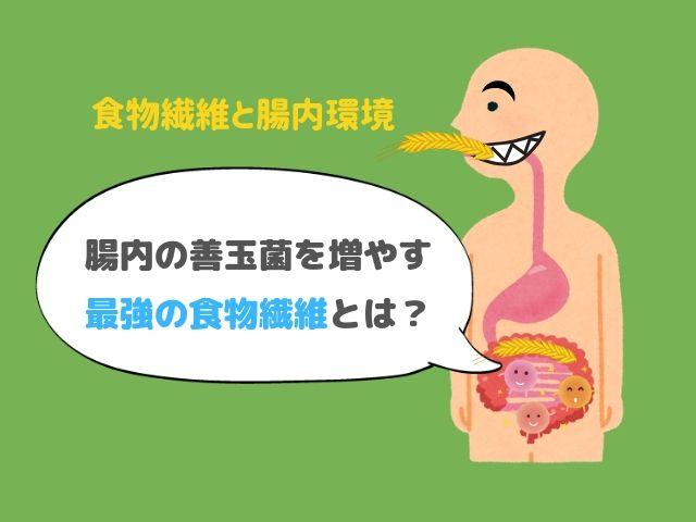 腸内細菌 食物繊維 プレバイオティクス 増やす