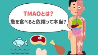 牛肉や卵に含まれる物質を腸内細菌が代謝した「TMAO」とは?魚を食べると一番増えるって本当?