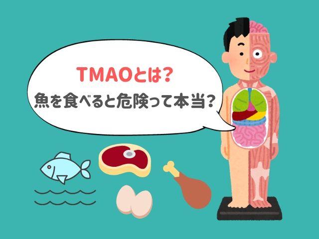 【危険因子】牛肉や卵に含まれる物質を腸内細菌が代謝した「TMAO」とは?魚を食べると一番増えるって本当?