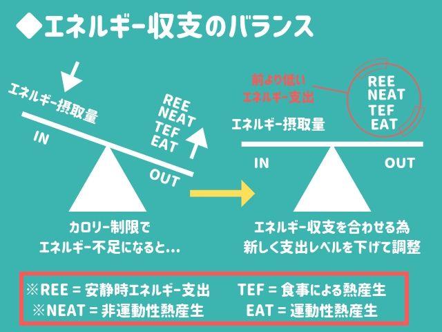 プチ断食がカロリー制限よりダイエットに効果的な理由