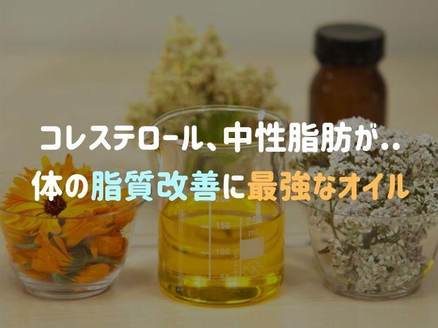 コレステロール値や中性脂肪が気になるあなたへ「脂質改善に最強の油」とは?