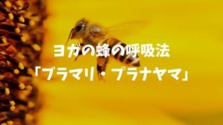 蜂のように吸って吐くヨガの呼吸法「ブラマリ・プラナヤマ」のやり方と効果