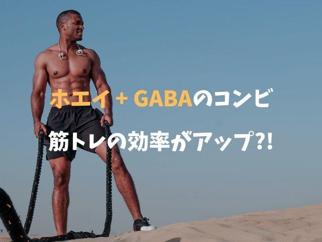 ホエイプロテイン + GABAの組み合わせで筋トレの効果がアップ!
