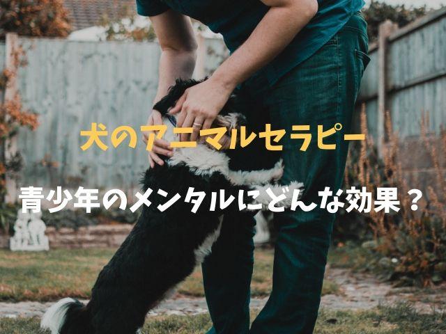 犬と触れ合うアニマルセラピーは青少年が抱えるメンタルの問題にどんな効果があるのか?