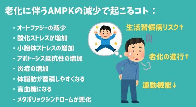 【図解】体内に備わった超優秀なエネルギー感知機能「AMPK」基礎編!プチ断食やメトホルミンとの関係も解説。