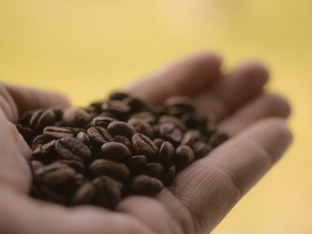 カフェインで寝不足な脳を覚醒させる効果が限界を迎えるのは〇〇日目以降
