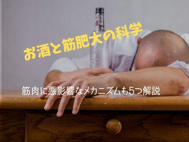 「お酒は筋トレの成果を低下させるよ」という話の本当のところは?裏側にあるメカニズムを解説