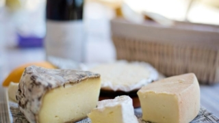 飽和脂肪酸は減らすべき?いや、摂取源をチーズにすれば話は別かもよ