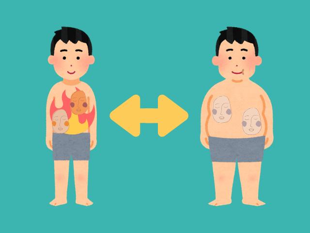 太る脂肪と痩せる脂肪…?脂肪細胞には大きく3種類ある!【白色・褐色・ベージュ】