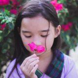 メタ分析:「女性の方が男性より嗅覚が鋭い」は本当なのか?