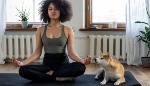 【認知機能からメンタル面まで】毎日たった13分の瞑想を8週間続けるだけでこんなに違う!