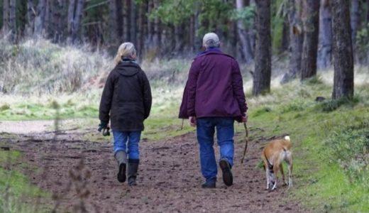 【BCAA, EAA】アミノ酸系サプリと筋トレで変形性関節症持ちの高齢者はどこまで肉体改造できるのか?
